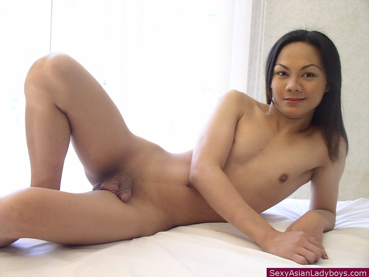 Shaved Ladyboys - Young and shy ladyboy undressing to flash her salivating ...