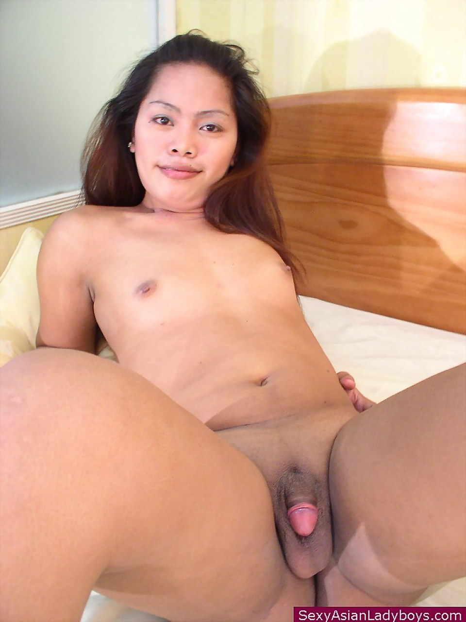 with-new-asian-ladyboy-galleries
