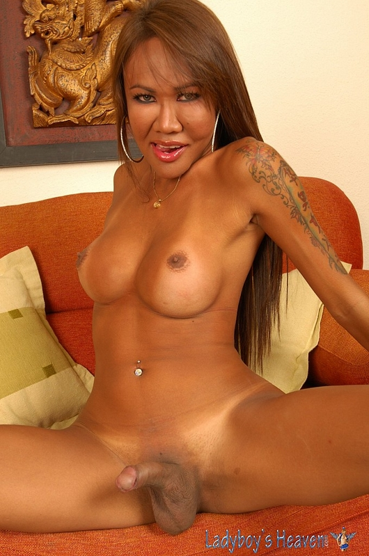 Shemale Asian Ladyboy Hd